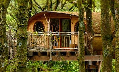 Two Night Tree House Escape for Two spadays main 1